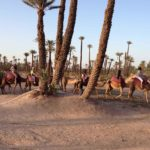 Go on an adventure with these three excursions available from resorts in Morocco