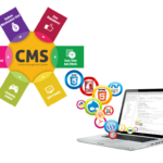 Influencing Customers on a Multi-Channel Level with CMSs